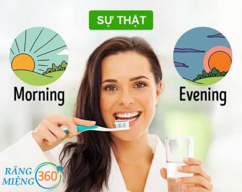 Hướng dẫn đánh răng đúng cách để trắng răng 2